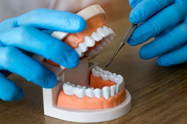 Mãos de dentista enquanto trabalhava na dentadura, dentes postiços, um estudo e uma mesa com utensílios odontológicos