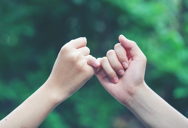 Mãos de gancho do dedo mindinho um do outro no fundo da natureza