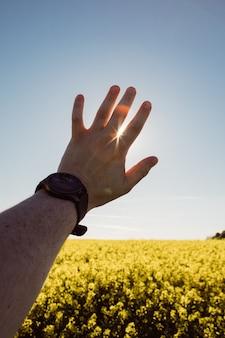 Mãos de homem com relógio nos raios de sol do pulso passando por dedos copiam espaço