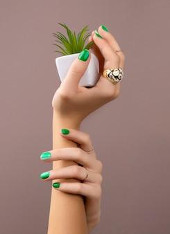 Mãos de mulher bonita bem cuidada com unhas verdes segurando uma planta