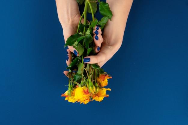 Mãos de mulher bonita com manicure segurando rosas contra fundo azul clássico