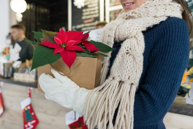 Mãos de mulher em luvas de inverno com flor de poinsétia vermelha de natal