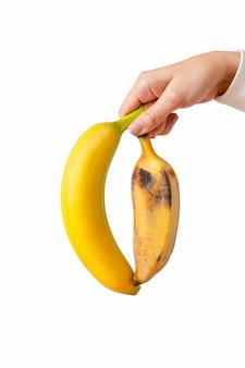 Mãos de mulher segurando dois tipos de banana frescos e mimados isolados