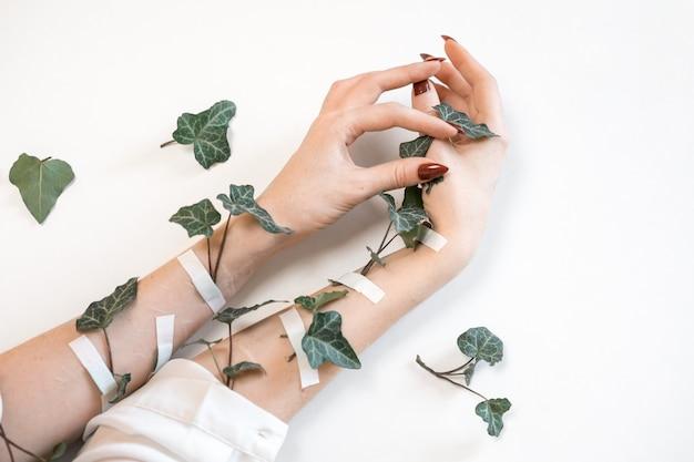 Mãos de mulheres bonitas na moda sobre fundo branco e folhas verdes