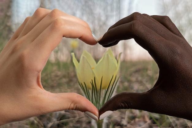 Mãos de pele negra e caucasianas em forma de um coração em uma flor de floco de neve na floresta.