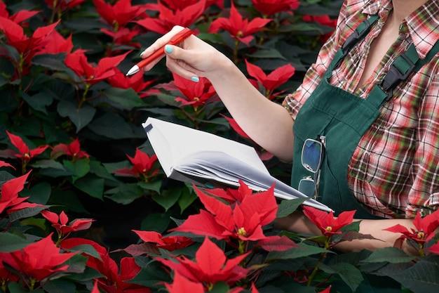Mãos de uma engenheira agrônoma registrando o desenvolvimento da poinsétia no viveiro de plantas em um caderno de papel