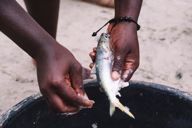 Mãos de uma mulher africana descascar peixe em um caldeirão na rua