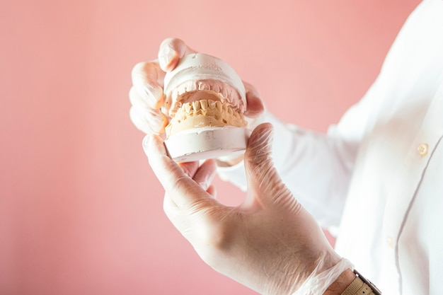 Mãos do médico exibindo dentaduras compostas em fundo rosa.