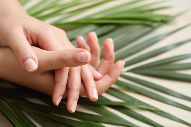 Mãos femininas. conceito de cuidados com a pele e manicure