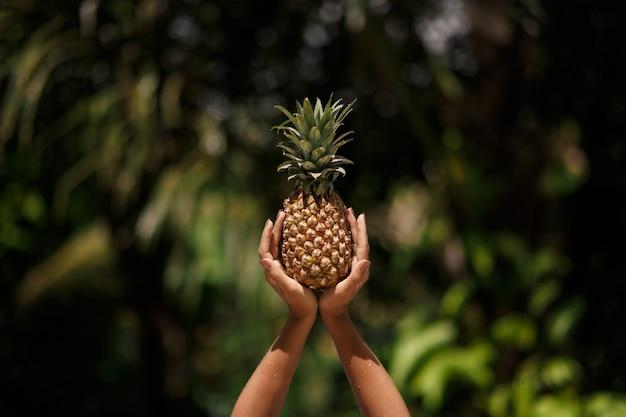 Mãos femininas detém abacaxi na selva tropical verde.