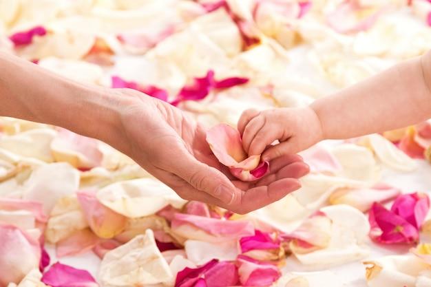 Mãos femininas e bebê com pétalas de rosa