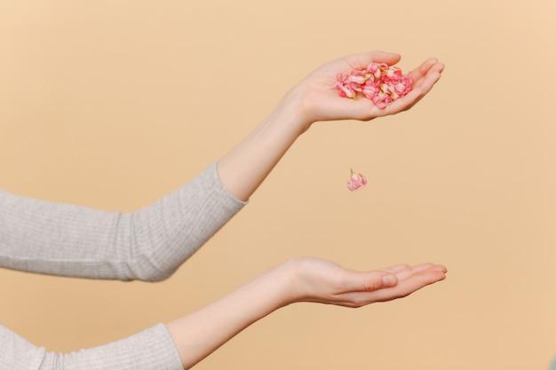 Mãos femininas e flores cor de rosa e pétalas nas palmas