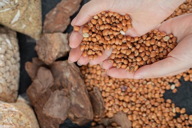 Mãos femininas segurando um monte de feijão vermelho