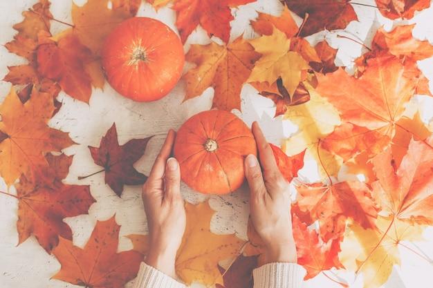 Mãos femininas segurando uma abóbora. conceito do dia de ação de graças
