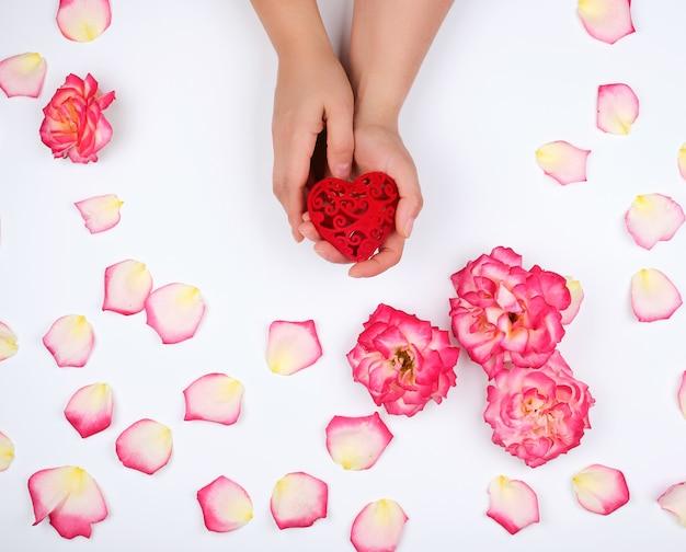 Mãos femininas segurar coração vermelho rodeado por pétalas de rosa cor de rosa