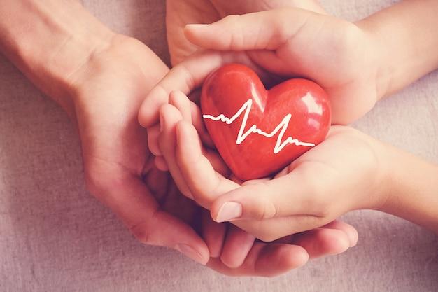 Mãos holiding coração vermelho, cuidados de saúde, doação de órgãos, conceito de seguro de família
