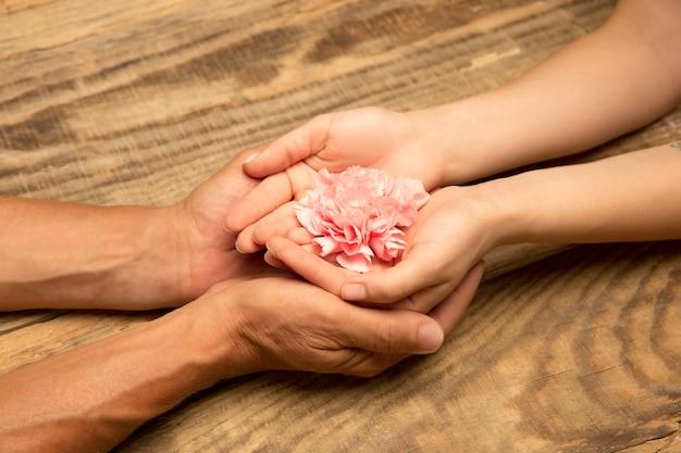 Mãos humanas segurando tenras flores de verão juntas isoladas em um fundo de madeira com copyspace. humor de primavera, bem-estar, estilo de vida saudável, romântico, natureza e conceito orgânico. spa, suporte, beleza.