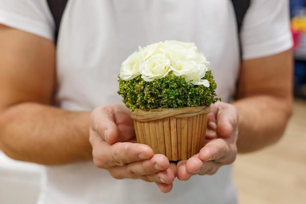 Mãos masculinas segurando um vaso de flores. conceito de compra de presentes na loja
