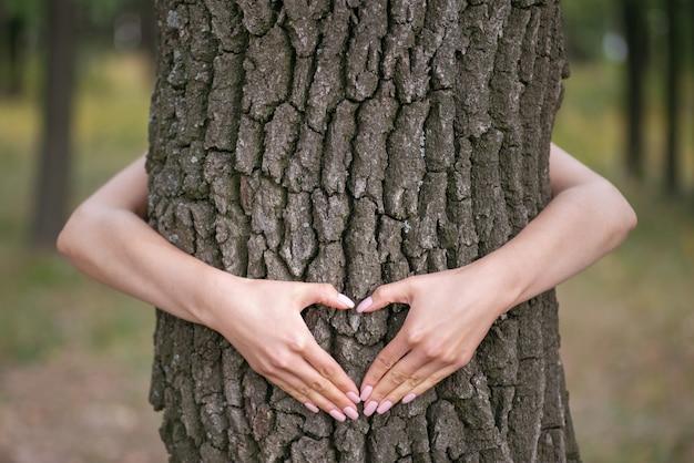 Mãos na forma de um coração em uma árvore