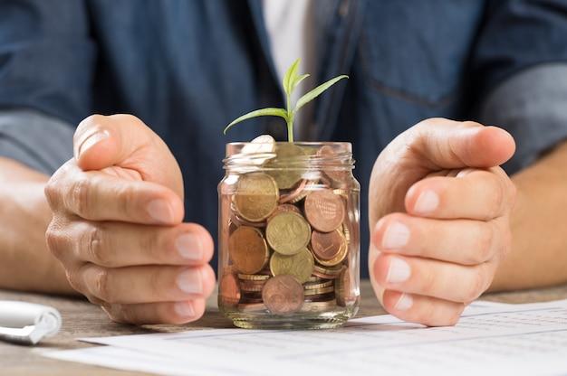 Mãos protegendo plantas crescendo de uma pilha de moedas