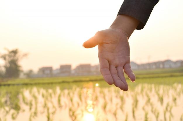 Mãos que alcançam para ajudar no fundo borrado da luz solar. conceito de ajuda.