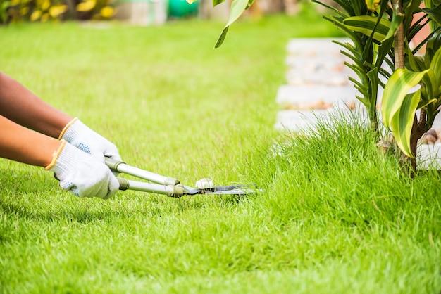 Mãos que guardam as tesouras de jardinagem na grama verde. conceito de jardinagem.