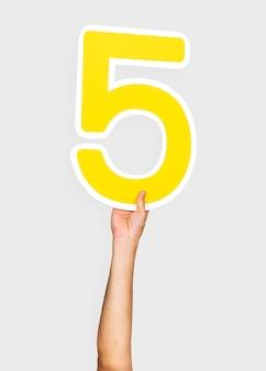 Mãos, segurando, a, numere 5