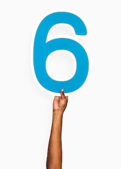 Mãos, segurando, a, numere 6