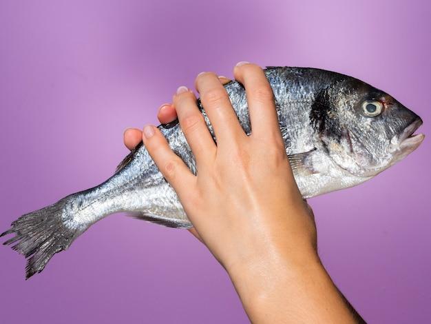 Mãos segurando peixe cru com brânquias