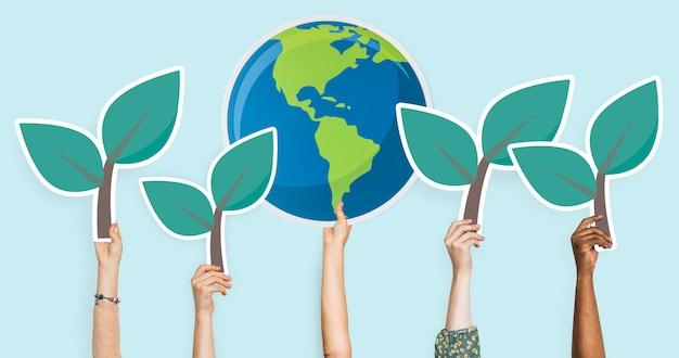 Mãos, segurando, plantas, e, mundo, clipart
