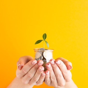 Mãos segurando um pote de moedas com planta