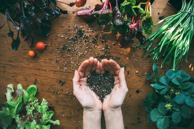 Mãos segurando um solo em forma de coração com mudas ao redor. horta orgânica urbana