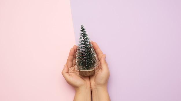 Mãos segurando uma árvore verde de natal