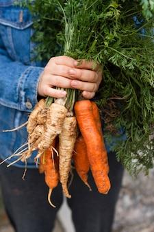 Mãos segurando uma cenoura orgânica e pastinaga