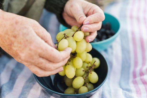 Mãos segurando uvas frescas