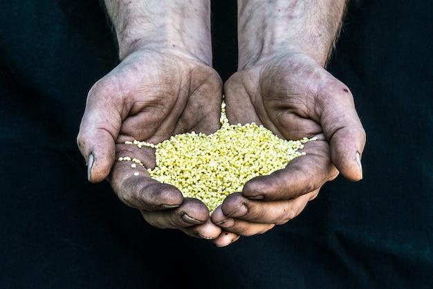 Mãos sujas pobre homem sem-teto com sementes de cereais, ilustrando a fome na sociedade capitalista moderna