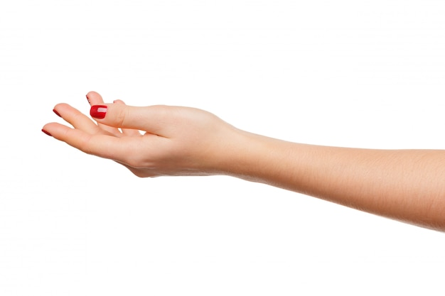Mãos, tomar, gesto, de, palma aberta, segurando, branca, isolado