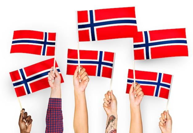 Mãos, waving, bandeiras, de, noruega