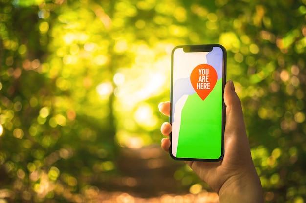 Mapas no smartphone no fundo da floresta. navegação ao ar livre, caminhada na foto do conceito de floresta