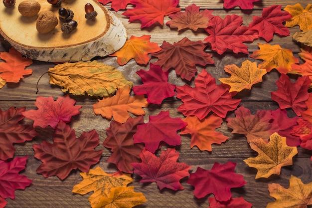 Maple folhas perto de pedaço de madeira e nozes
