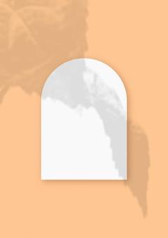 Maquete com sombras vegetais sobrepostas a uma folha em forma de arco de papel texturizado branco sobre fundo laranja de mesa. orientação vertical.