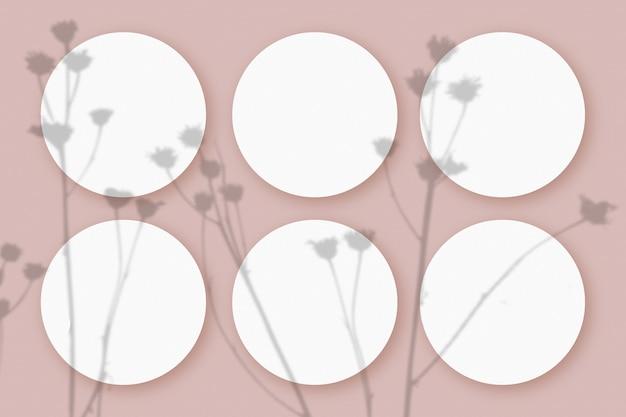 Maquete com sombras vegetais sobrepostas em 6 folhas redondas de papel texturizado branco sobre um fundo rosa de mesa.