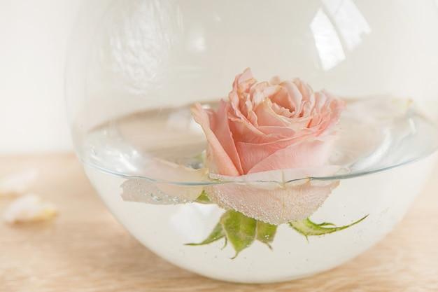 Maquete da moldura branca do retrato na mesa de madeira vaso de cerâmica moderno com rosas fundo da parede branca interior escandinavo