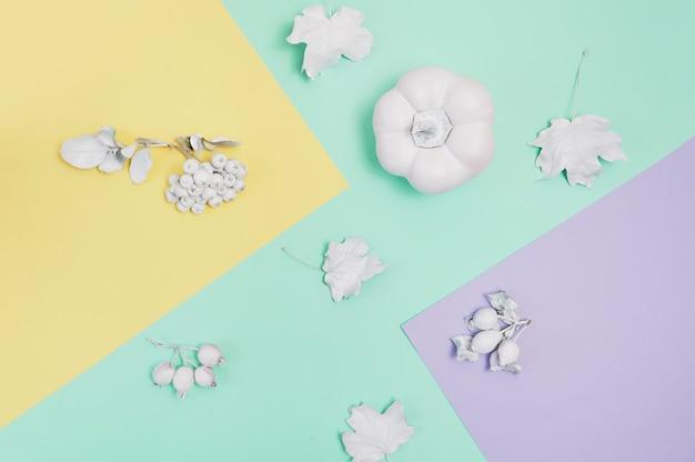 Maquete de quadro branco com abóbora, frutas e folhas em um fundo multicolor pastel de outono. cartão de felicitações