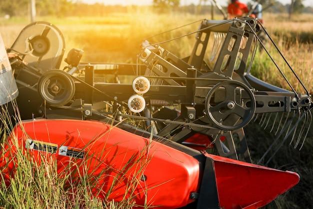 Máquina de agricultura colheitadeira e colheita no trabalho de campo de arroz