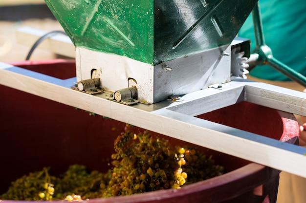 Máquina de colheita de uvas ou espremedor no trabalho