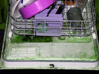 Máquina de lavar louça repugnante em proje abandonados