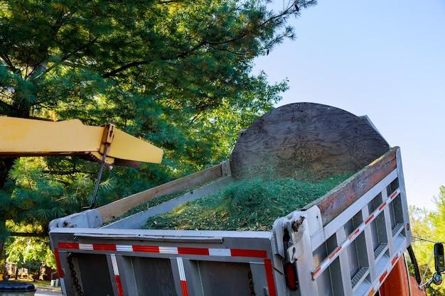Máquina picadora de árvore moendo árvore em caminhão coberto em bairro urbano.