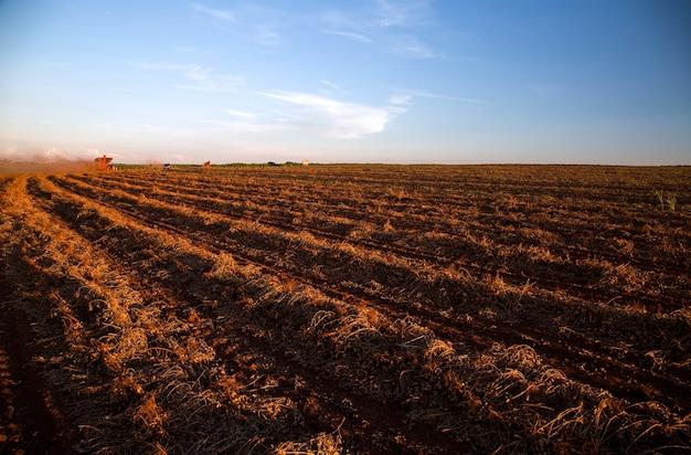 Máquina rural trabalhando no campo agrícola