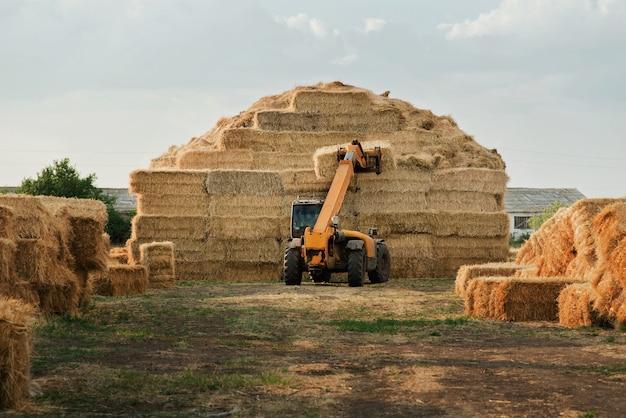 Máquinas empilhando fardos de feno em campos agrícolas